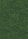 Пробковые полы с фотопечатью Corkstyle Fantazy Green замковые