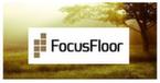 Focus Floor (Россия)