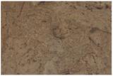 Viscork Scandia Plank Stone напольная пробка замковая